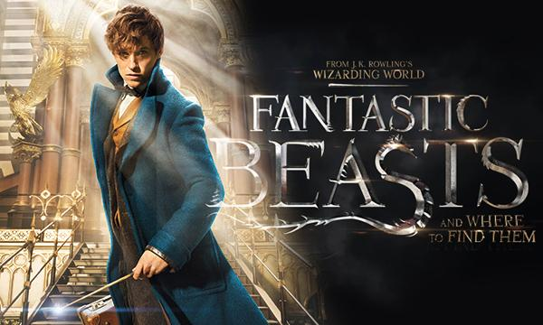 Fantastic Beasts and Where to Find Them Magically Brings Back Harry Potter Nostalgia