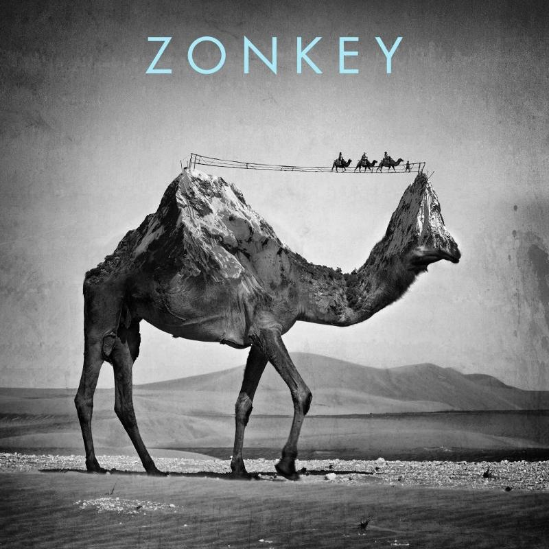 %22Zonkey%22+is+Undesirable+at+Best