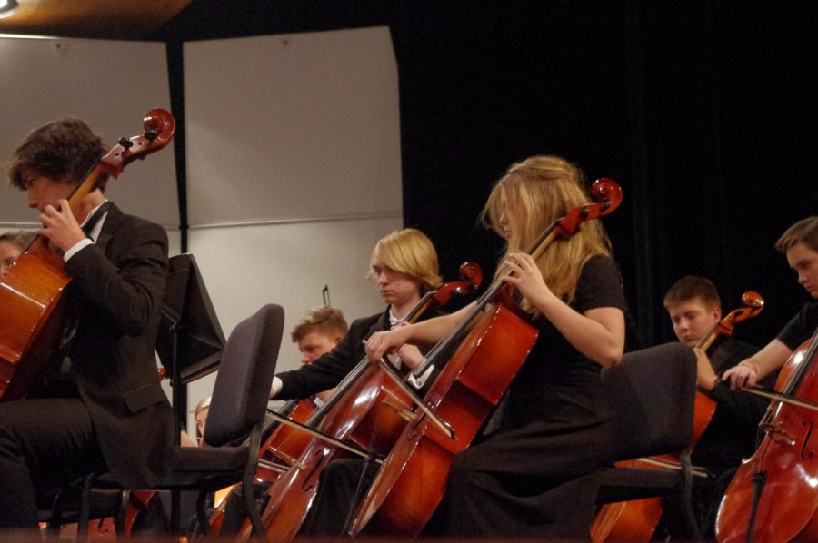 Junior Savannah Godolphin (right) playing the cello in the Chamber Orchestra at their fall concert on 10/17