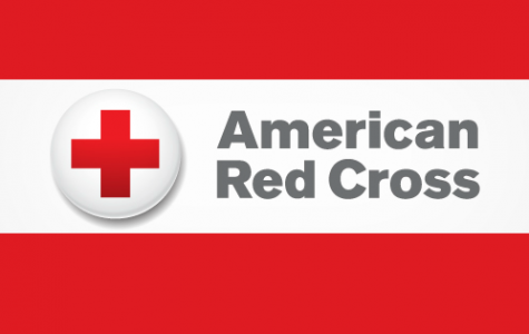 Student-Run HOSA Encourages Blood Donation