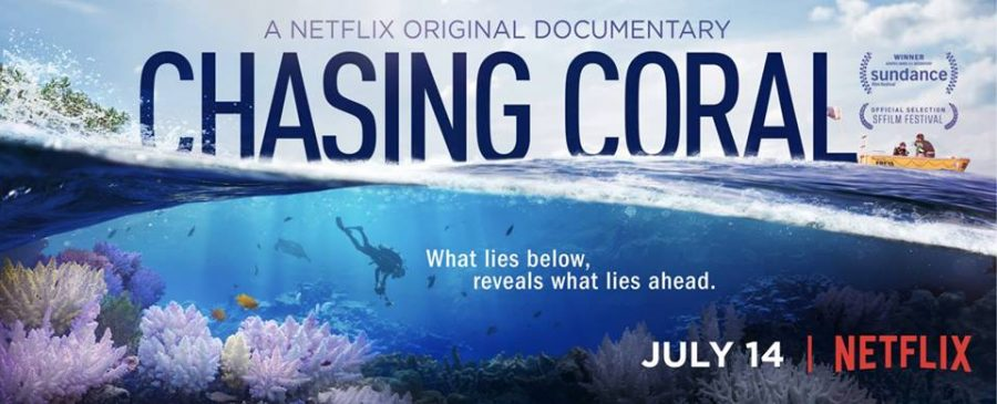 """Coral Nerds"" from Chasing Coral Netflix Original Film Visit Mount Pleasant"