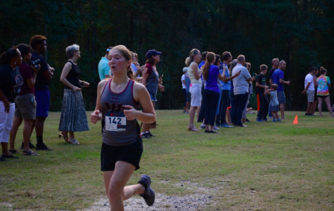 Laura Ciccarelli run in October 17 meet.