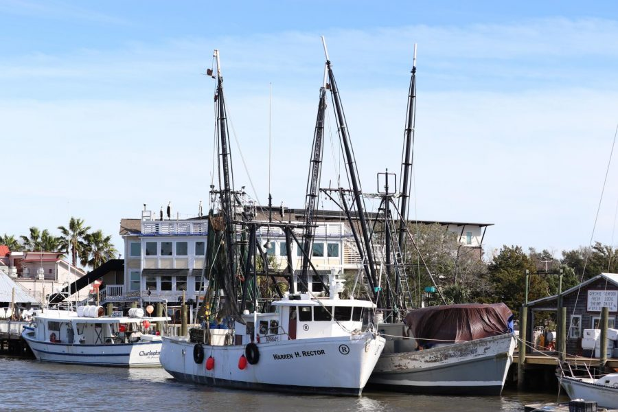 The Warren H. Rector is one of the many shrimp boats that could be affected by off shore drilling and can be found on Shem Creek in Charleston.