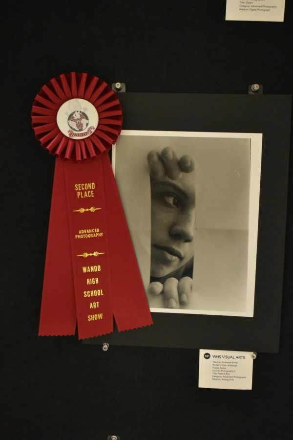 Second Place Award for Advanced Photography. Created by Eliza Latsbaugh