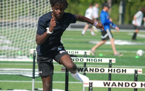 Boy's and Girl's Track Advance to the State Championship