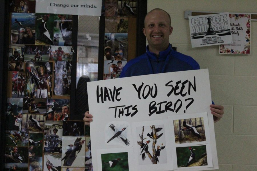 Coach Zach Neal brandishes his Ivory-Billed Woodpecker poster in front of his classroom.