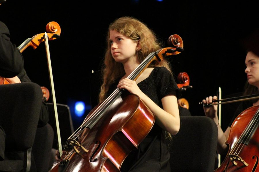 Wando Orchestras perform at annual winter concert