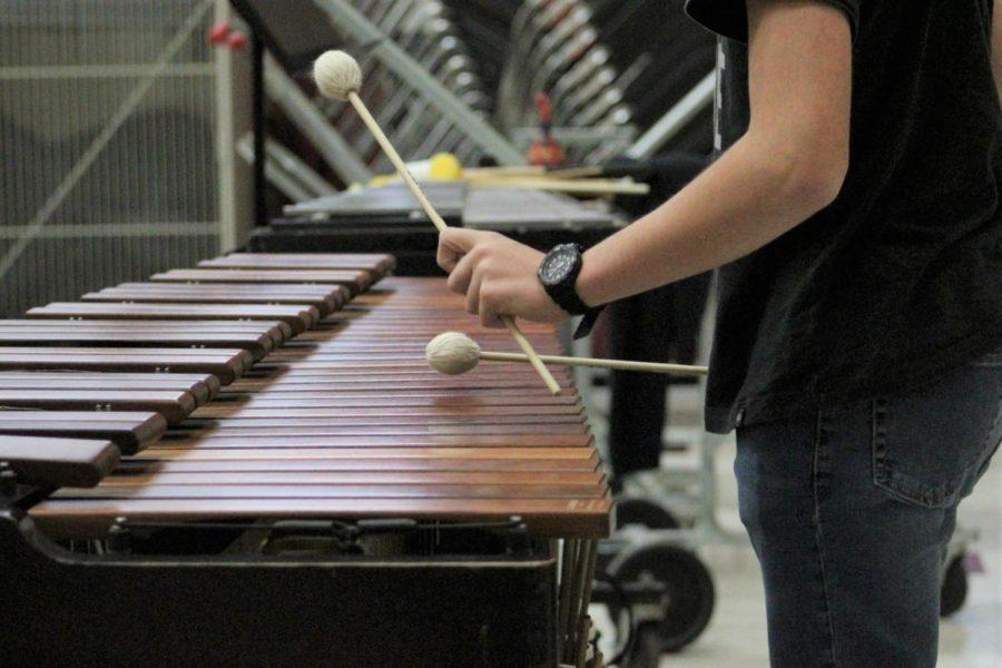 Wando Philharmonic breaking boundaries between musicians